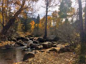 Upper Truckee Creek area