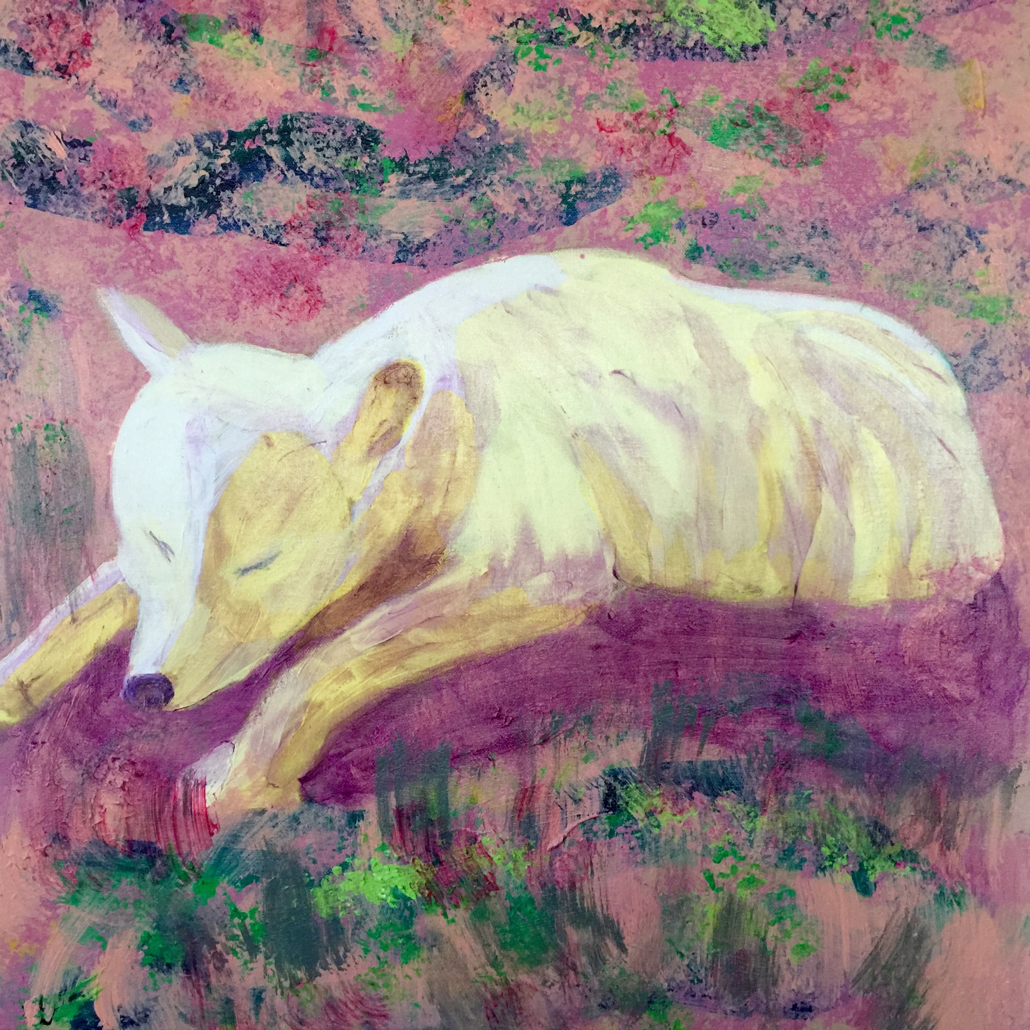 Arctic Wolf - - Original for Sale - Prints Available