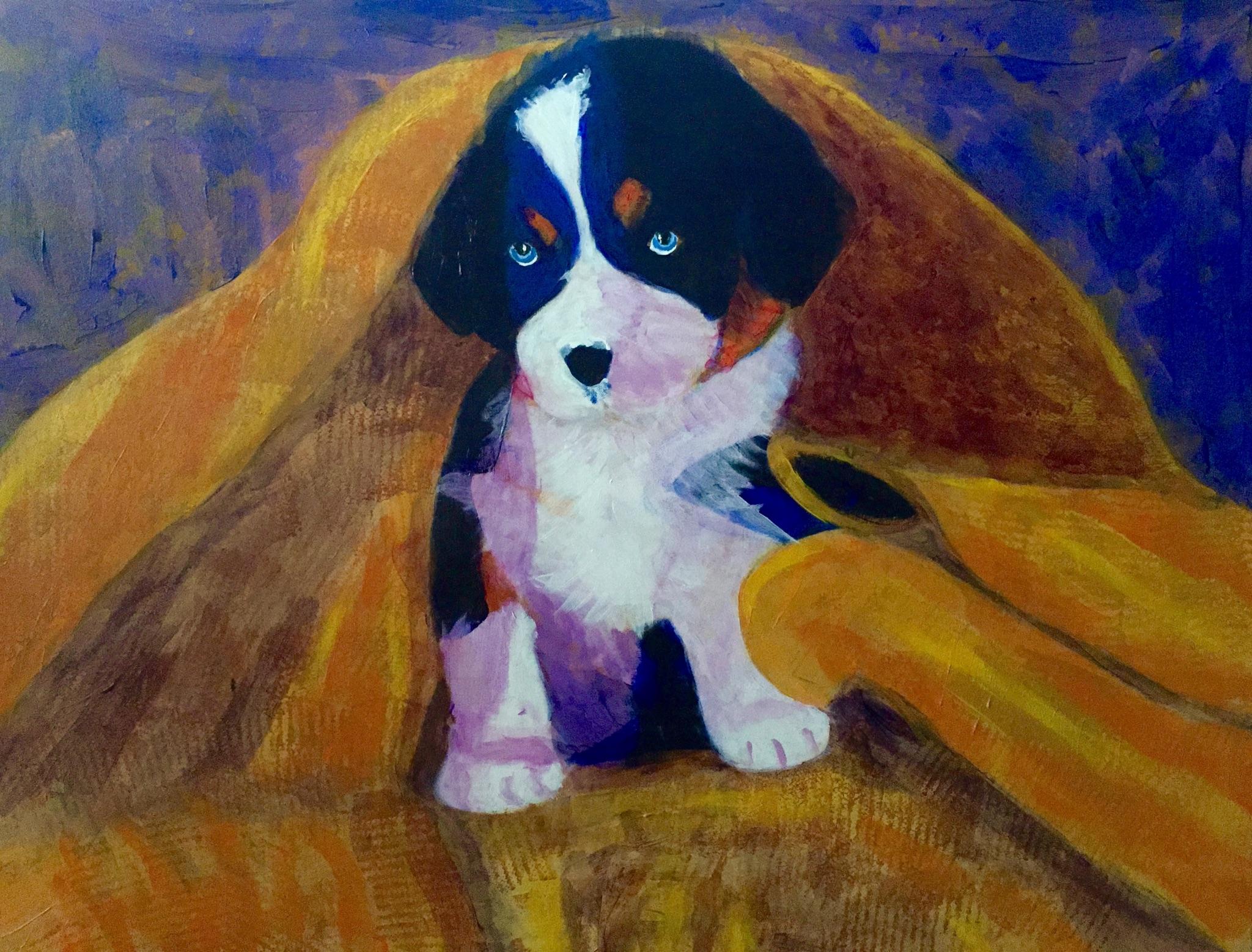 Bernese Mountain Dog Series