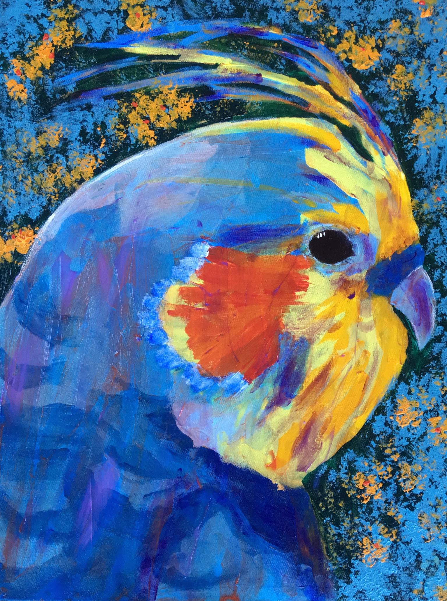 Cockatiel Fine Art Print by Donald Ryker