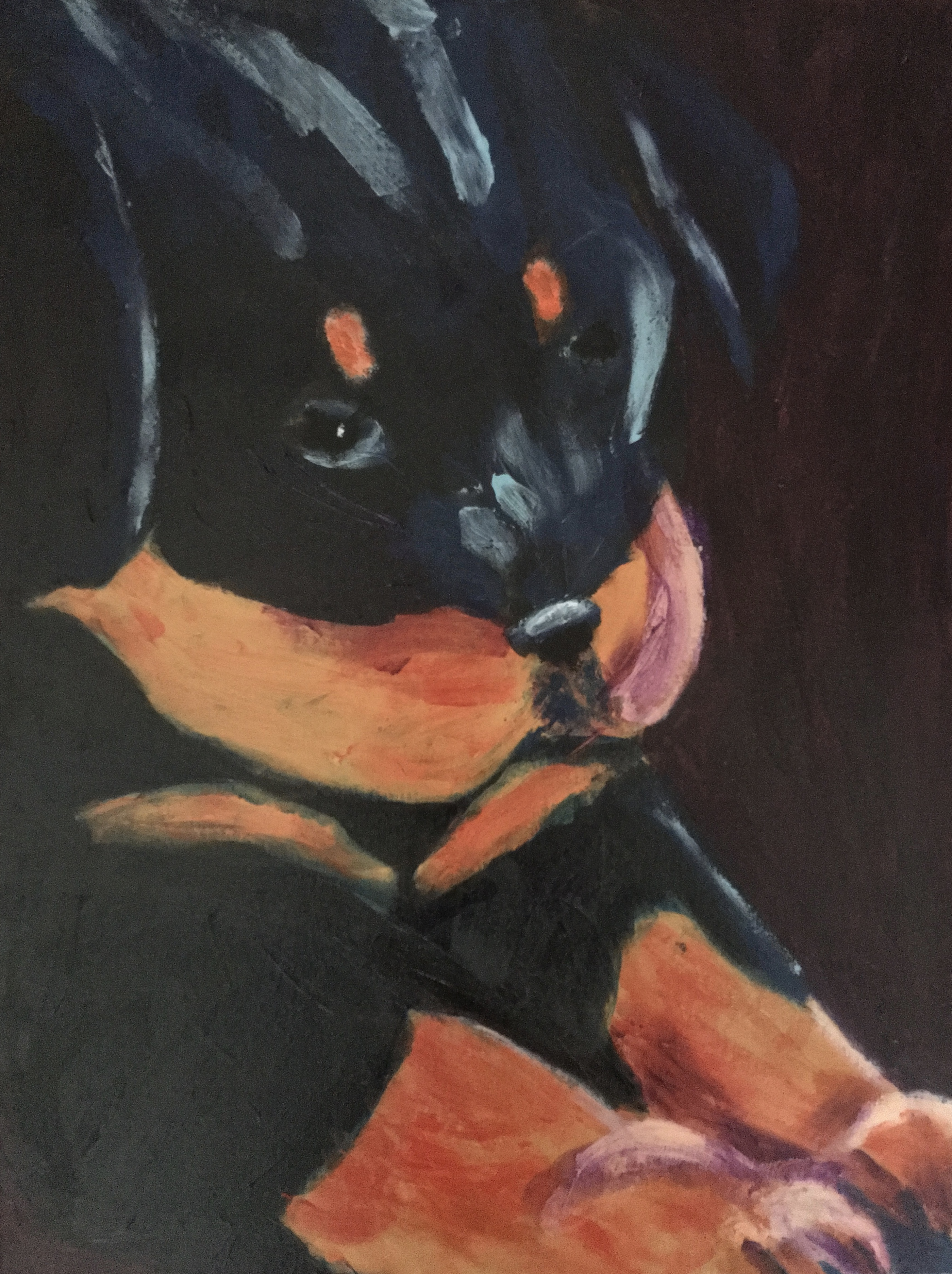 Rottweiler Puppy - Original For Sale - Prints Available