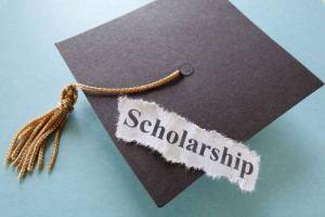 INEF Scholarship Award