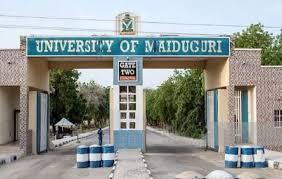university of Maiduguri school fees