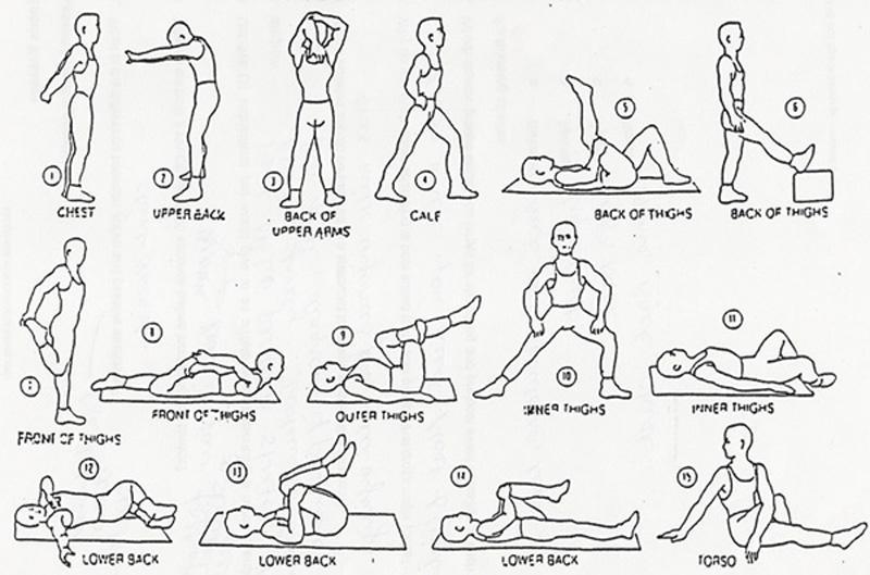 Flexibility Article – 11/08/2008