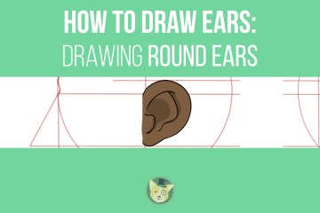 How to Draw Ears - Drawing Round Ears by Don Corgi