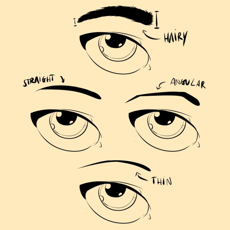How to Draw Eyebrows - Eyebrow Shapes Examples by Don Corgi