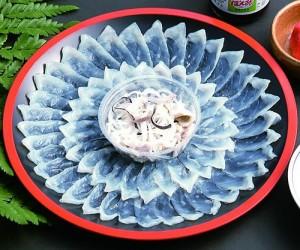 Fugu il pesce palla giapponese  Dondakeit