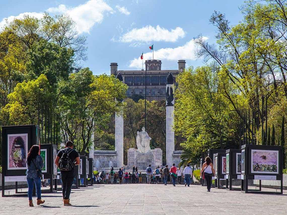 festival bosque de chapultepec
