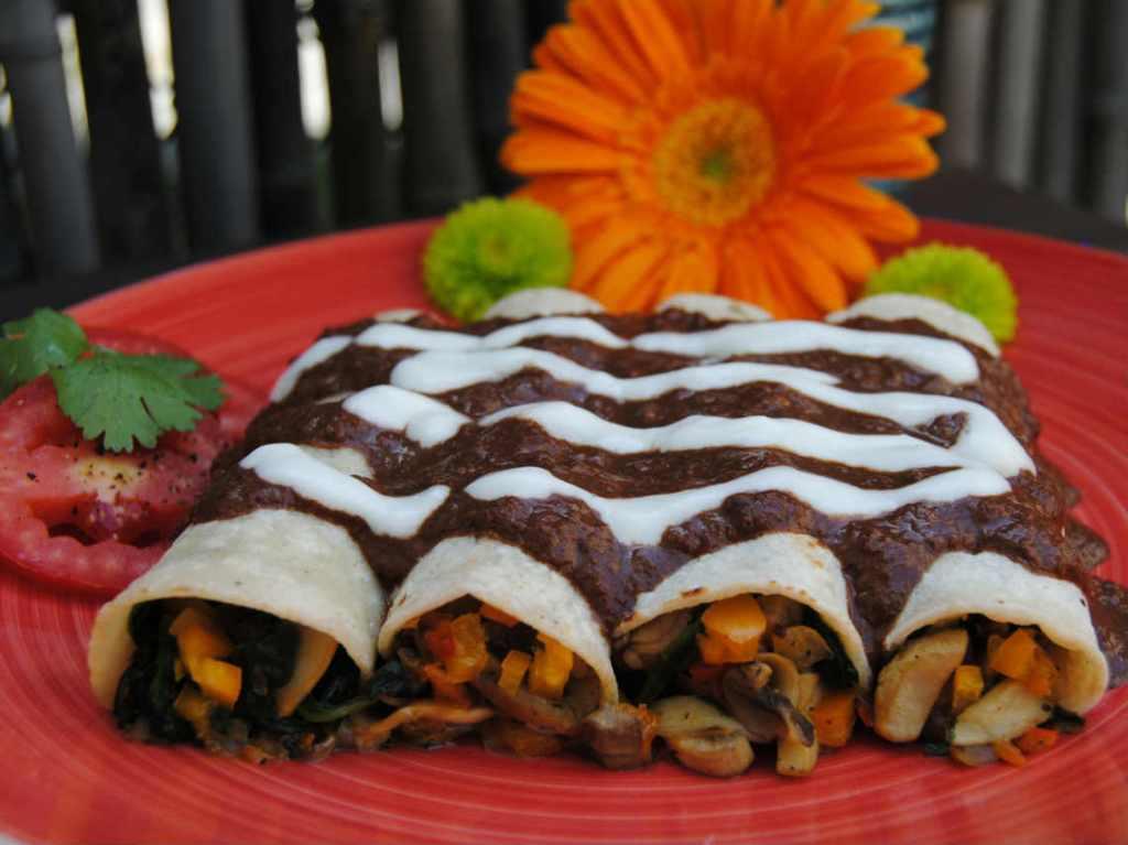 Fiesta de la Enchilada Vegana en CDMX