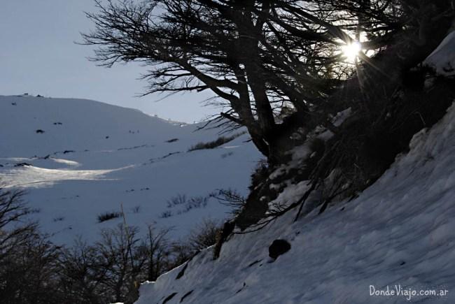 Camino en el Cerro Catedral, en Bariloche