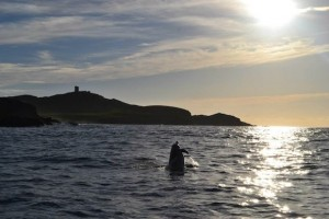 Stunning Malin Head form the ocean.