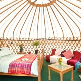 Yurt Interior2