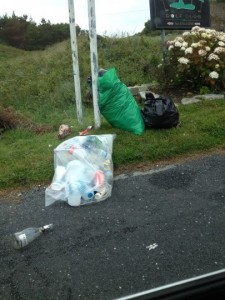 Some of the rubbish dumped in Kincasslagh today.