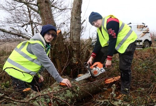 Ronan and Conor cutting up some of the fallen tree.