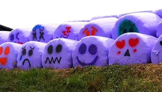 Donegal woman gets arty with emoji bales on family farm