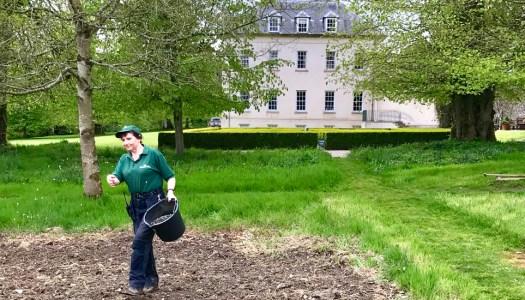 How Wendy works wonders at Oakfield Park