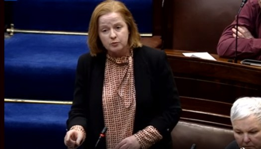 Woman denied abortion for fatal foetal abnormality, Dáil told