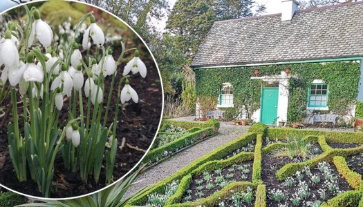 The gorgeous Glenveagh Gardener's House opening to the public this weekend