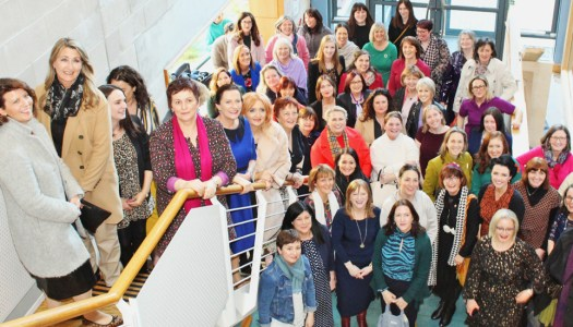 Events: Celebrating all things local with the Donegal Women in Business Network