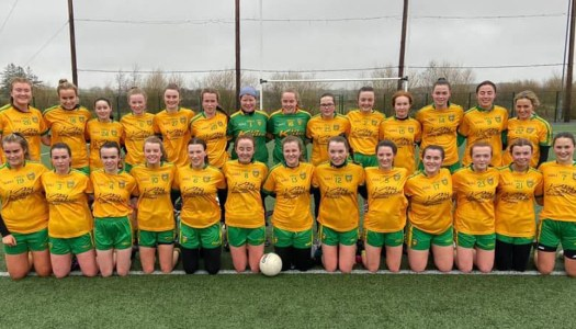 Donegal Ladies step up for 5million step challenge