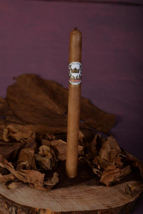 Lancero Connecticut 38x7.5""
