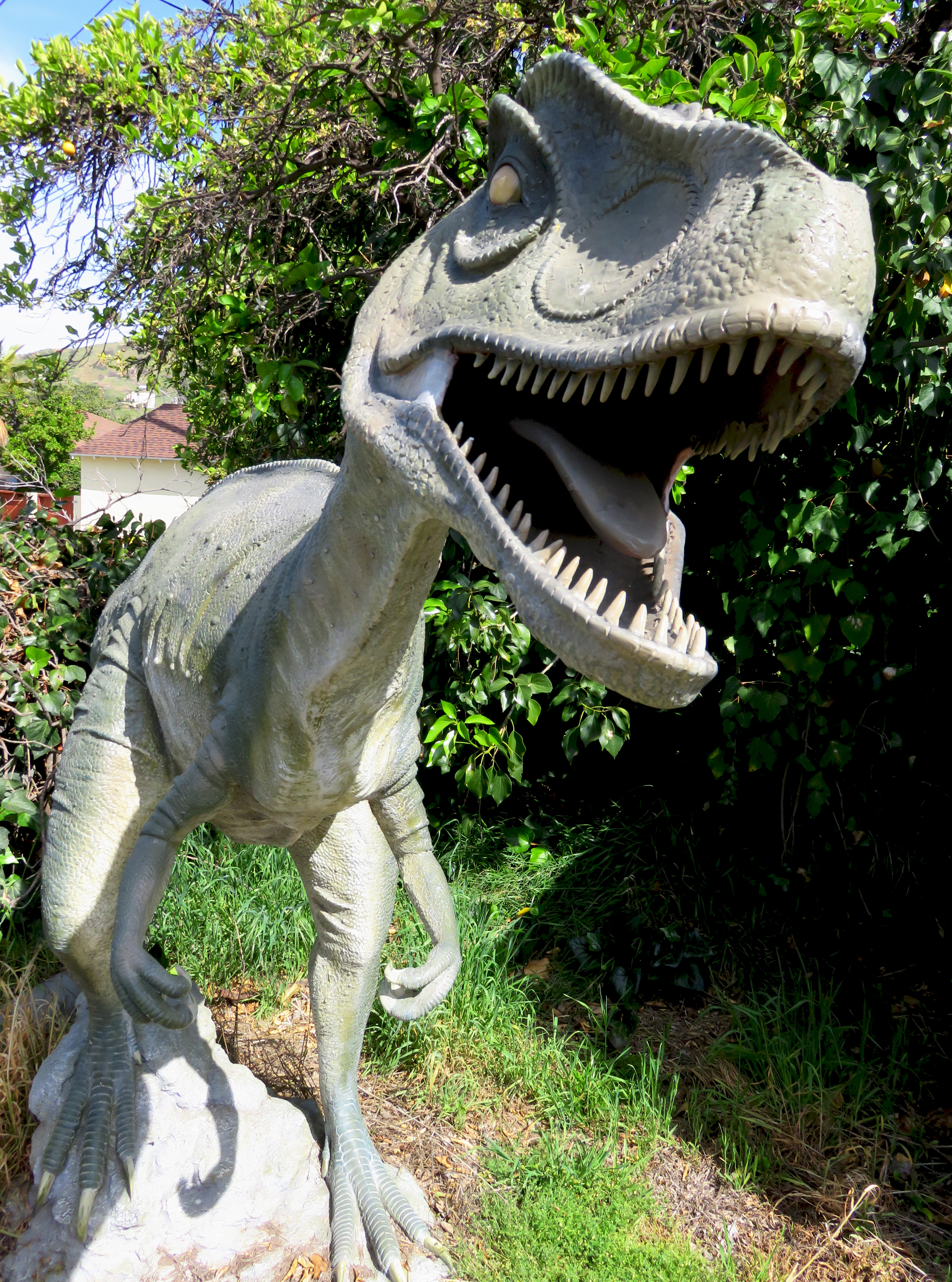 Don Gluts Dinosaurs  Dinosaur Items and Other Prehistoria