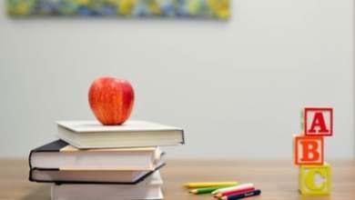"""البرنامج التعليمي """"نجوم العلوم """" بموسمه ال 12 ستنطلق فعالياته الأسبوع المقبل"""