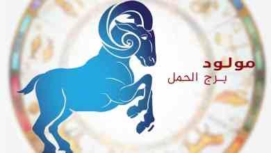 Photo of توقعات برجك الحمل اليوم الأثنين  11/1/2021 على جميع الأصعدة