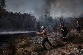 تركيا تسيطرعلى أغلب حرائق الغابات