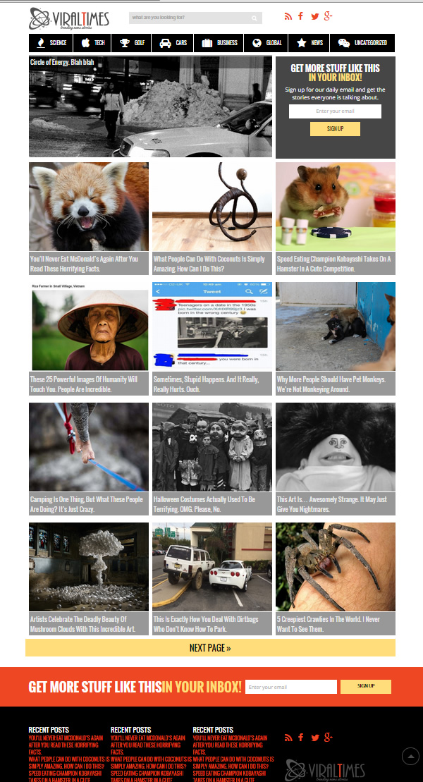 viral times wordpress theme