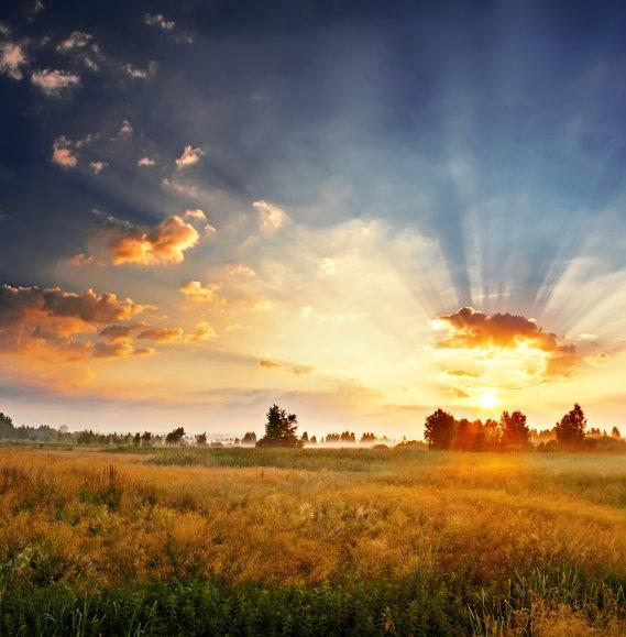 Che cosa significa sognare la pianura  DonnaD