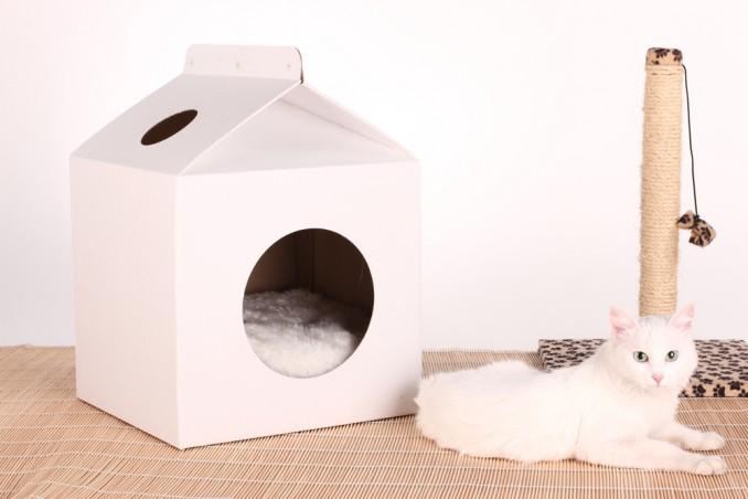 Come Costruire Una Cuccia Per Gatti Fai Da Te Donnad