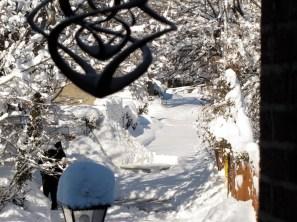 Snowy Philadelphia after a snow storm