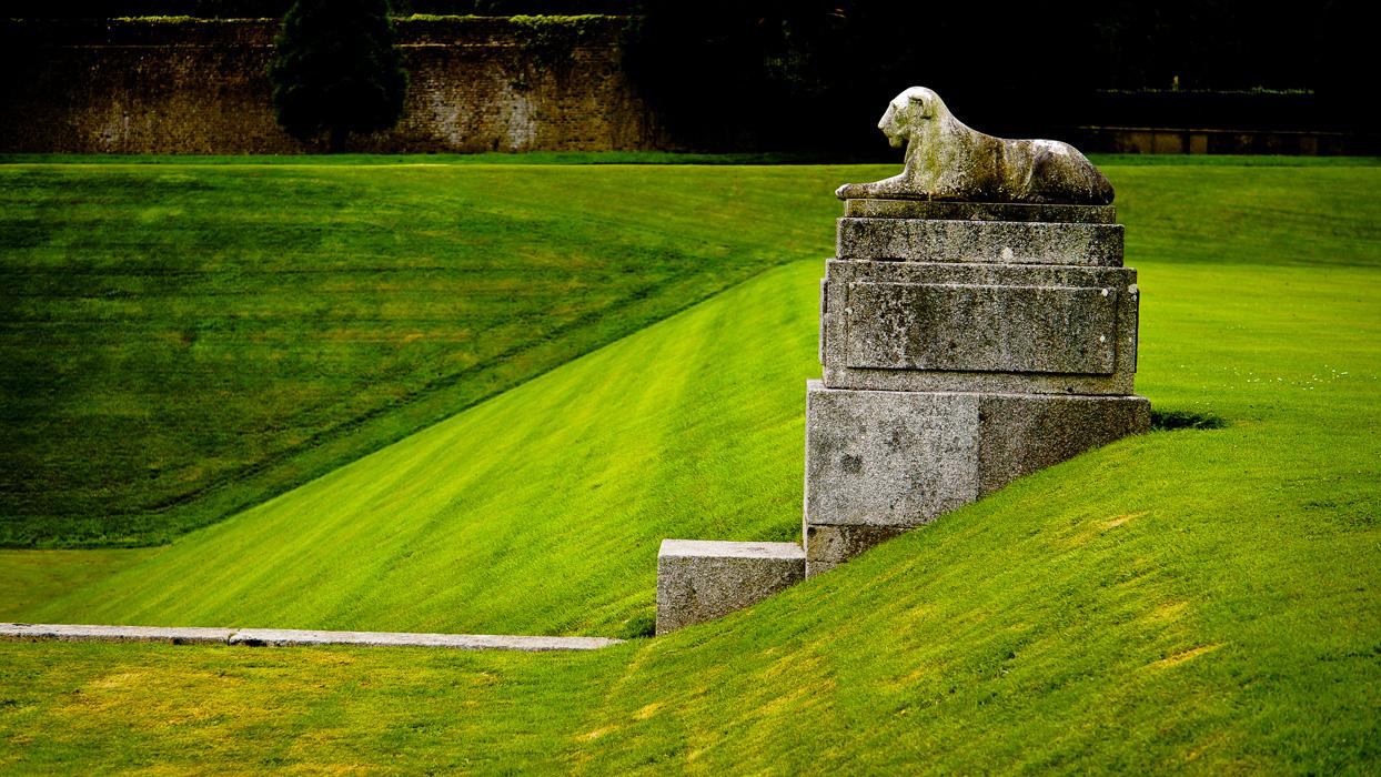 garden lion