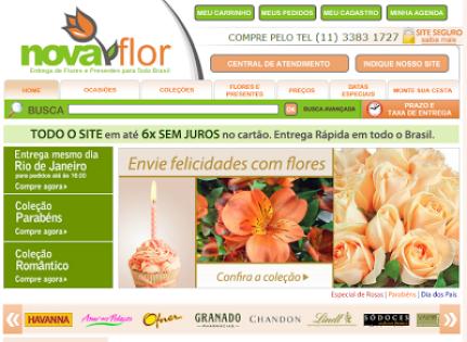 Nova Flor.PNG