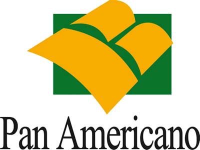 Contas em Atraso Panamericano Como Pagar Contas em Atraso Panamericano - Como Pagar