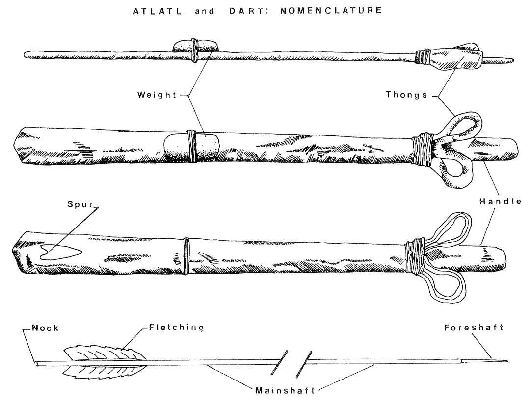 hight resolution of atlatl