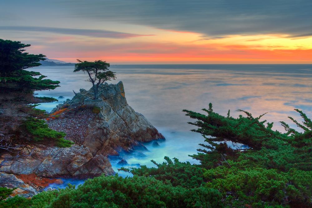 Point Lobos State Natural Reserve near Carmel, Calif