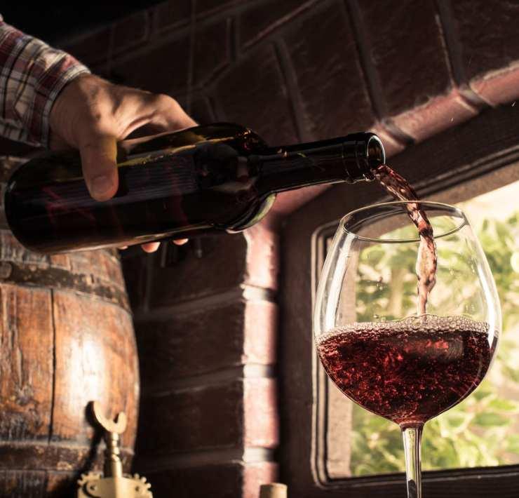 Winemaking Experiences Around the World