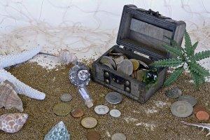 net some hidden treasure