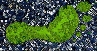 Ozone Zöld Díj a kisebb ökológiai lábnyomért