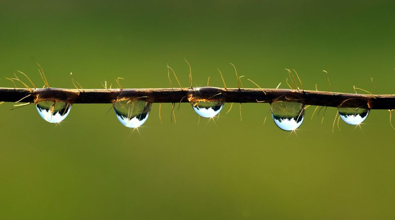 A környezetvédelem a kiegyensúlyozott fejlődést segíti