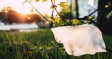 Műanyag zacskóktól pusztulnak a híres szelíd szarvasok a japán Nara Parkban