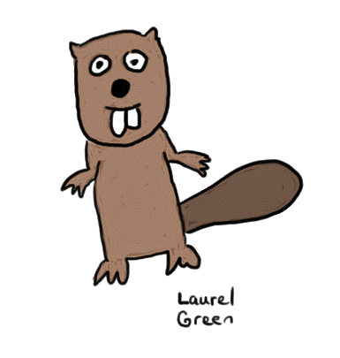 a drawing of a beaver