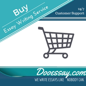 writing essays service