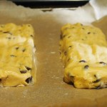 Chocolate Chip Biscotti | doomthings