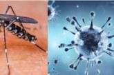 मानसून आते ही प्रशासन के सामने डेंगू से बचाव की चुनौती
