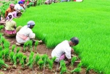 उत्तराखंड में किसानों के अच्छे दिन