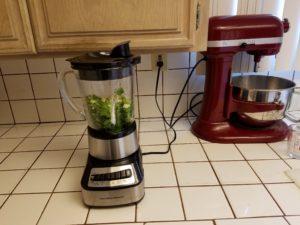 cilantro in blender