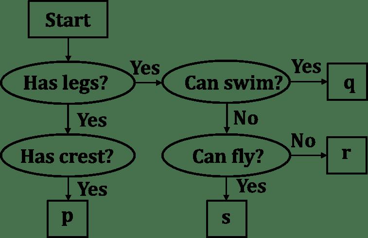 NSO Level 1- Science Olympiad (SOF) Class 3 Birds